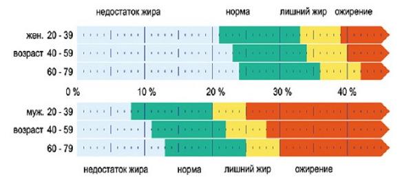 Нормы процента жира в мужском и женском организме