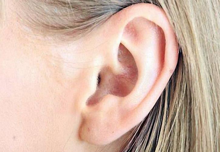 Почему шелушатся уши внутри: причины и возможные заболевания