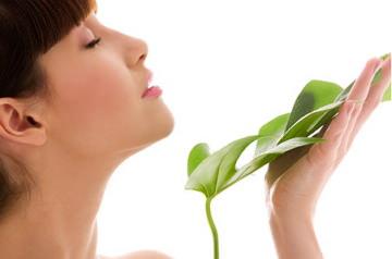 Еда для очистки организма от токсинов: ТОП 36 лучших продуктов